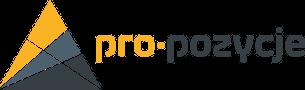 Agencja SEO Pro Pozycje - pozycjonowanie stron